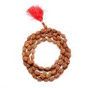 4 Mukhi Rudraksha Mala (Indonesia) (108+1 Beads) GJSPC Certified