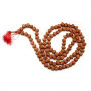 9 Mukhi Rudraksha Mala (Indonesia) (108+1 Beads) GJSPC Certified