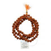 Original 5 Mukhi Rudraksha Jaap Mala (108+1 Beads) GJSPC Certified 5.50 - 6.00 M.M.