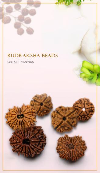 Rudraksha Malas