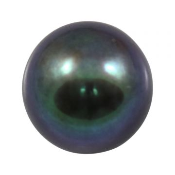 Black Fresh Water Pearl (Moti) Cts 8.4 Ratti 9.24