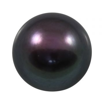 Black Fresh Water Pearl (Moti) Cts 7.52 Ratti 8.27