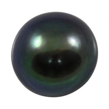 Black Fresh Water Pearl (Moti) Cts 7.26 Ratti 7.99