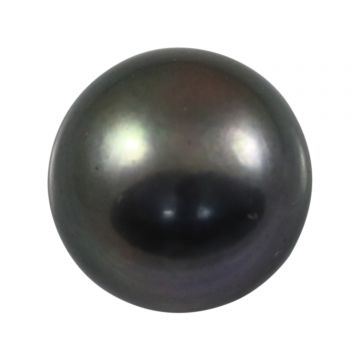 Black Fresh Water Pearl (Moti) Cts 6.68 Ratti 7.35