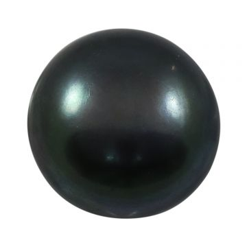 Black Fresh Water Pearl (Moti) Cts 6.45 Ratti 7.1